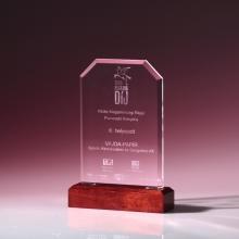 Pegazus Award 2009